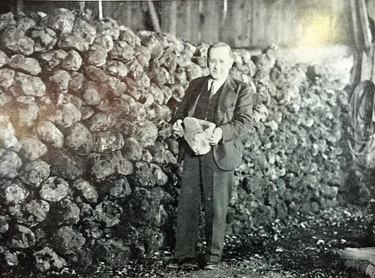 Reuben 1951